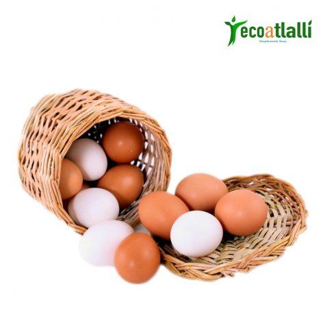 Huevos de Rancho