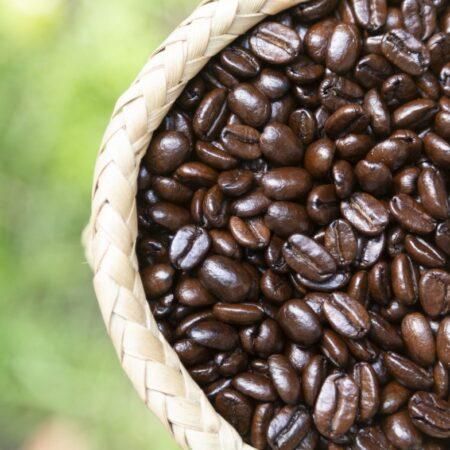Café Chiapaneco ecológico 400gr