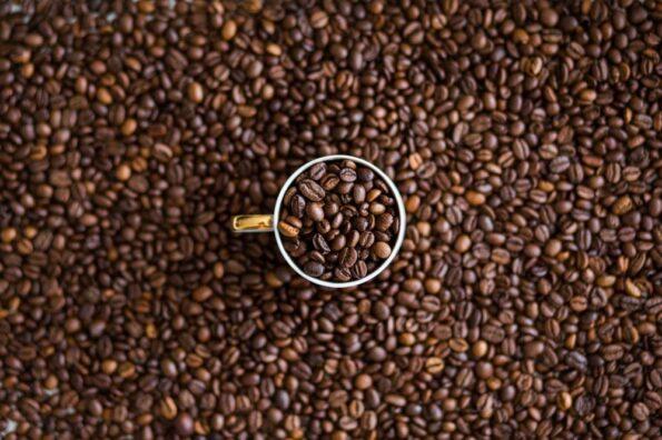Café organico