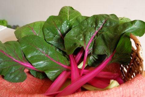 Canasta verde grande. Verduras, frutas, hortalizas, quesos, huevos de rancho