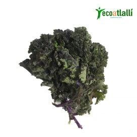 Kale purpura 100g