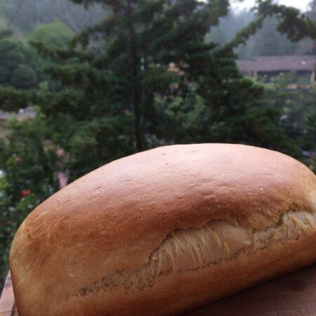 Pan de caja (con leche)