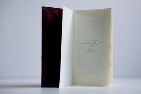 La vihuela en el llano – libro de arte