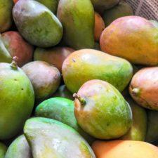 Mango Criollo 500gr