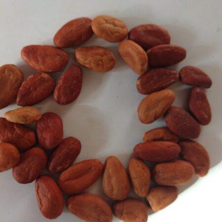 Cacao tostado 1 kg