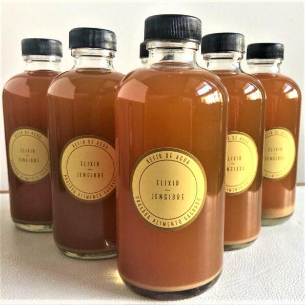 Elixir jengibre3